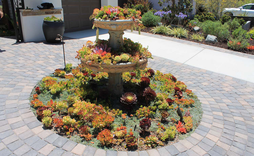 The centerpiece in the front of the home is an old water fountain that was given new life by turning it into a beautiful succulent planter. Photo: Courtesy OMWD Olivenhain MWD