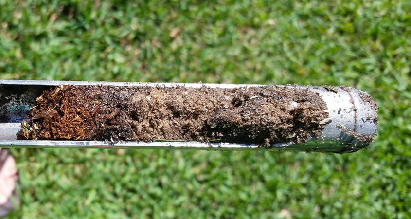 Use a soil probe to test how well irrigation dispenses into your landscape. Photo: Courtesy University of Florida/Creative Commons soil probe tips