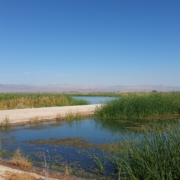 Salton Sea Management Program projects are moving ahead with new state funding. Photo: Water Authority