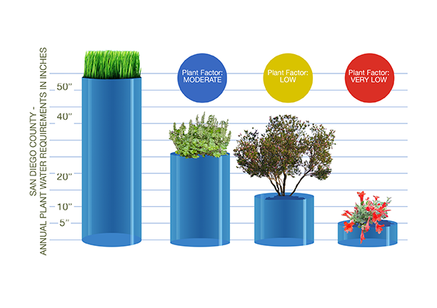 Plant Factor categories from high to low water use. Graphic: Water Authority