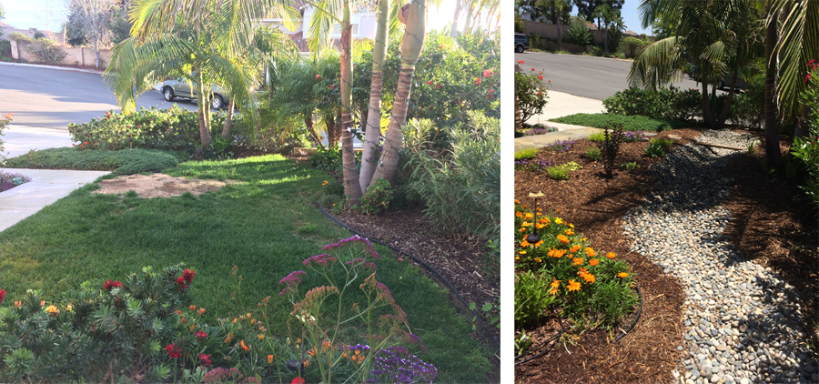 Before and after views of a landscaping project in San Diego. Photos: Water Authority. Sustainable landscaping