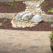 Give new landscaping plants plenty of room to grow and thrive. Photo: Water Authority