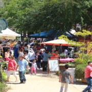 The 2017 Spring Garden and Butterfly Festival at The Water Conservation Garden. Photo: Water Conservation Garden