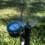 Choosing Your Best Irrigation Method: Spray or Drip