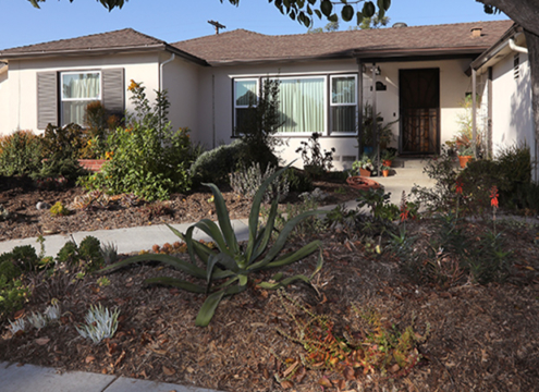 There are new enhanced rebates for removing turf and replacing it with sustainable landscaping. Photo: Water Authority
