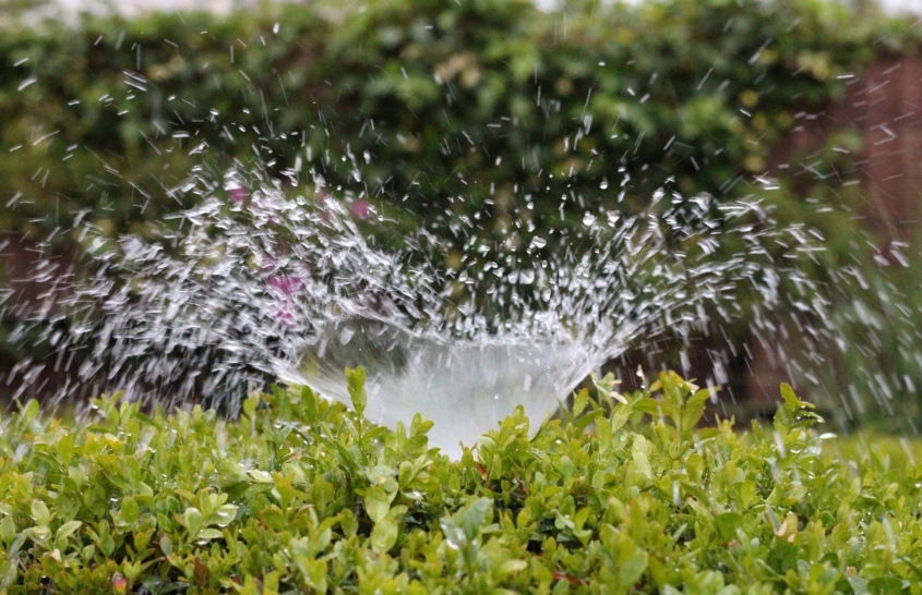 Well designed and operated irrigation systems can reliably deliver the water your landscaping needs without waste or excess. Photo: AxxLC/Pixabay