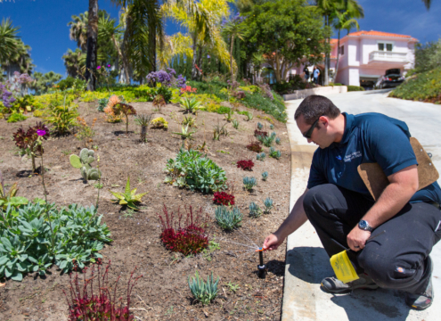 Efficient irrigation-landscaping-Conservation Corner aspects of sustainable landscaping can help you ensure the success of your project. Photo: Water Authority