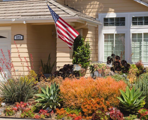 Laura Cates used succulents to create her winning landscape design in Oceanside. Photo: City of Oceanside drought tolerant gardens