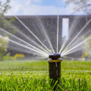 Inspect your sprinkler heads regularly to make sure they are not obstructed or watering onto pavement or other hardscapes. Photo: Irrigation Association
