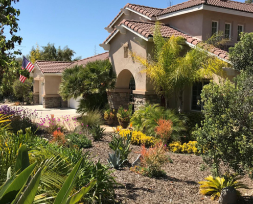 Colorful, waterwise plants replaced a thirsty, labor intensive front lawn in Deborah Brant's winning landscape makeover. Photo: Vista Irrigation District