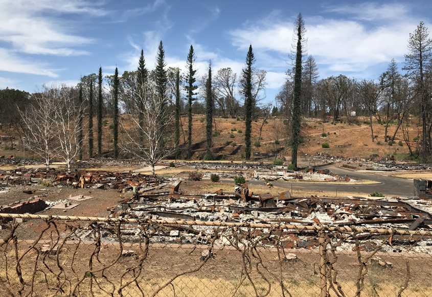 Damage remaining from the Camp Fire in Paradise, California. Photo: Padre Dam Municipal Water District