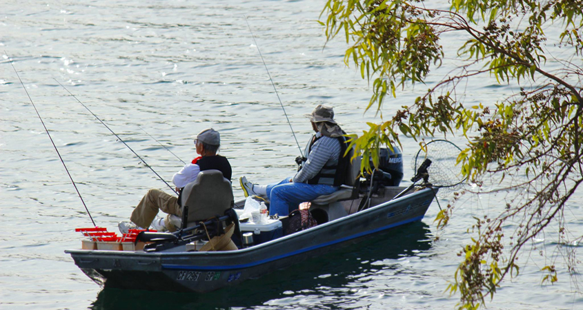 Fall fishing season is in full swing at San Diego County's reservoirs and lakes, including Lake Jennings. Photo: Helix Water District
