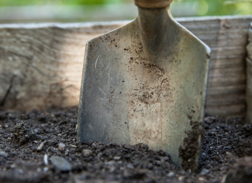 Set yourself up for landscaping success by building the best foundation in your soil structure. Photo: walkersalmanac/Pixabay
