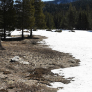 Sierra Nevada Snowpack Feb 27 2020 California DWR-WNN