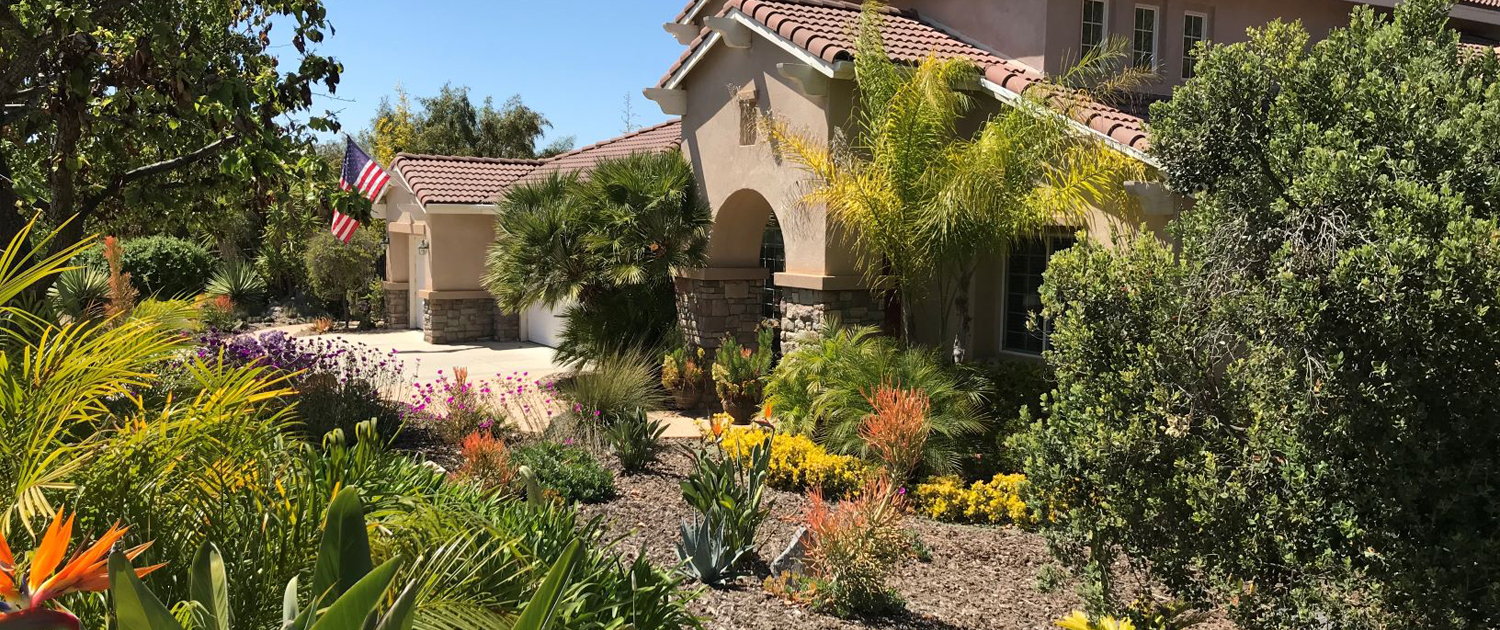 Colorful, water-wise plants replaced a thirsty, labor intensive front lawn in Deborah Brant's winning 2019 landscape makeover. Photo: Vista Irrigation District
