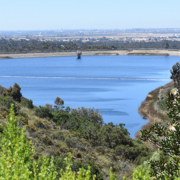 Miramar Reservoir will reopen for public recreation on Friday, May 25. Photo: City of San Diego San Diego Reservoirs reopen