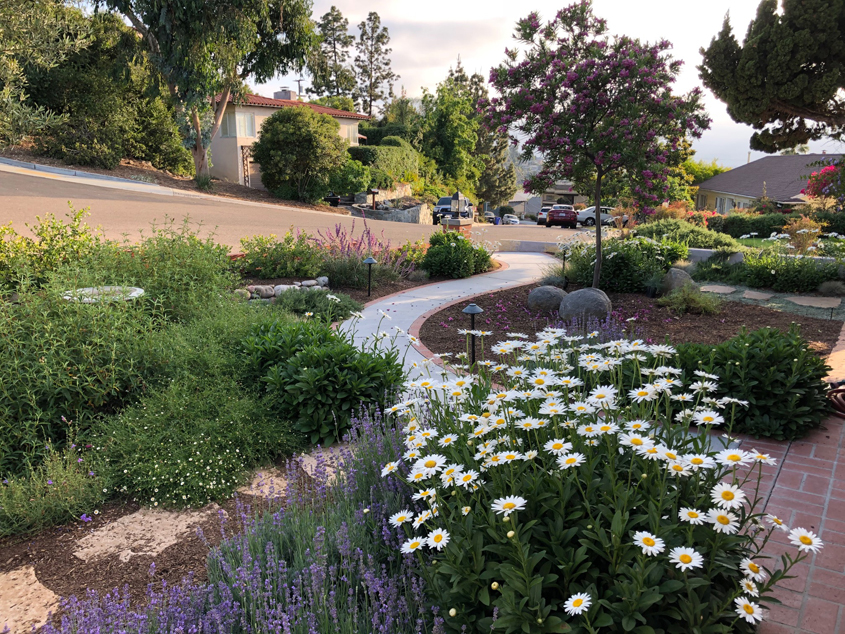 The new landscape design offers more privacy from surrounding streets. Photo: Helix Water District La Mesa Landscaping