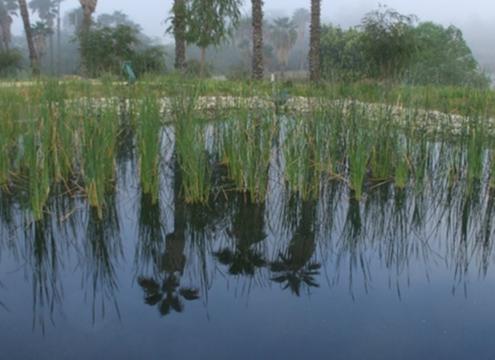 IRWM-SanDiego Wild Animal Park-Water Conservation