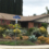 Sustainable Landscaping Project Checklist for Success