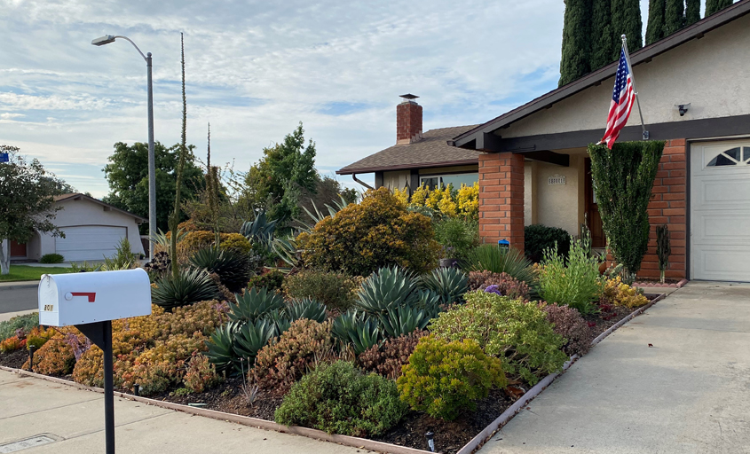 """The Brants selected plants they loved and """"found a place"""" for them. Photo: City of Escondido"""