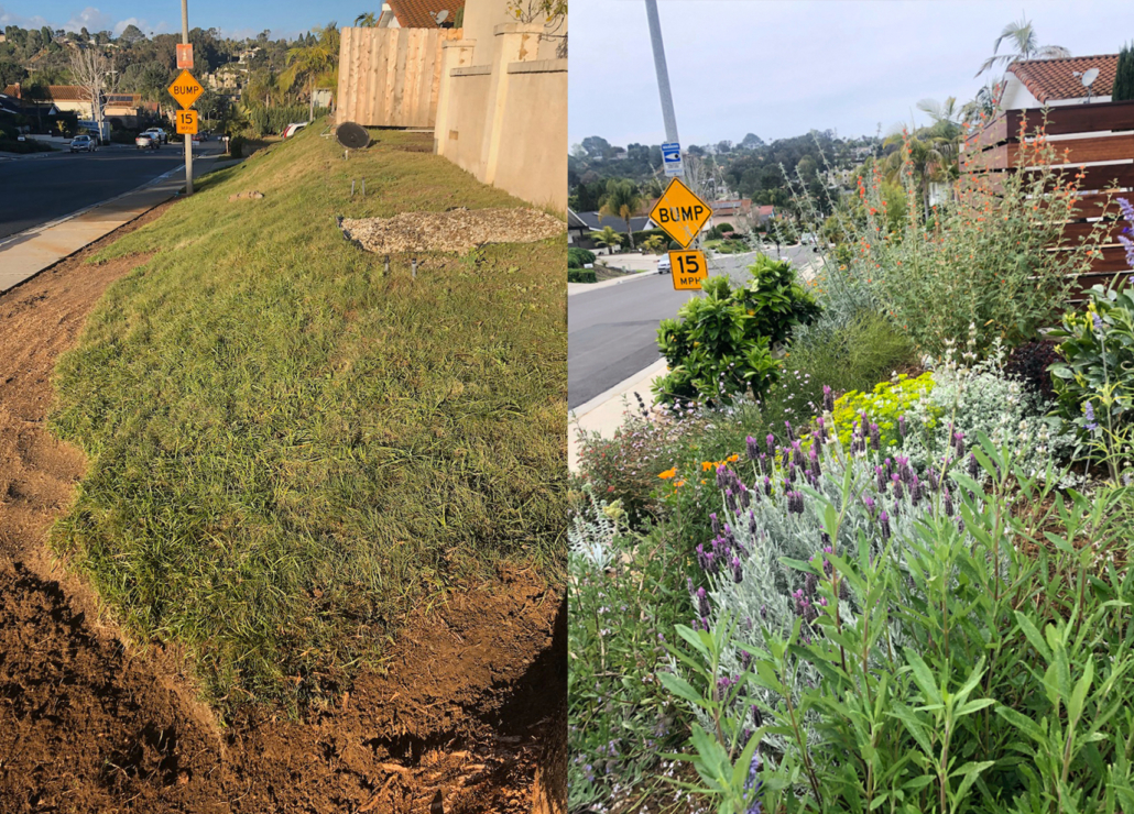 WaterSmart-Landscape Makeover-Olivenhain Municipal Water District