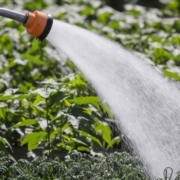 Special Agriculture Water Rates-Farmers-Water Rates