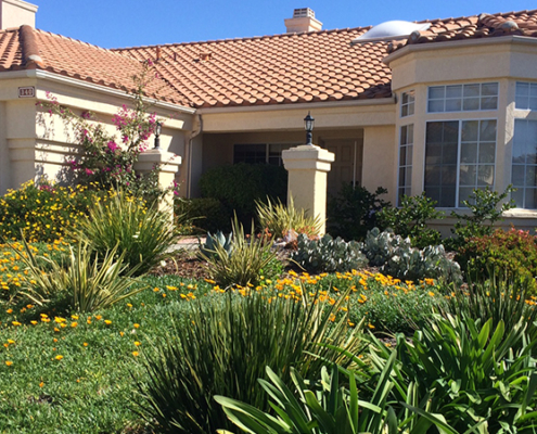 Turf rebates-Fall planting-November 2020-
