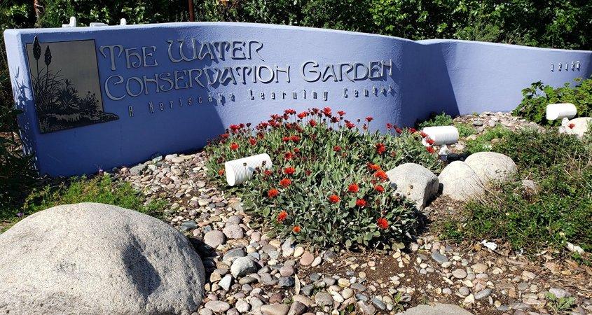 Water Conservation Garden-#FreeDayFriday-conservation