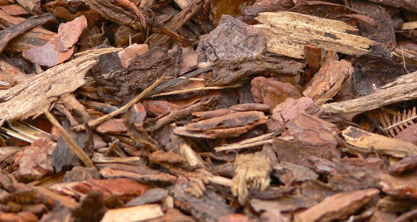 Mulch builds soil structure over time and holds in moisture. Photo: Monsterkoi/Pixabay compost