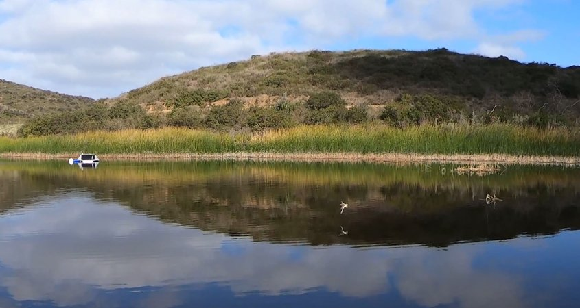 South Lake Reservoir is home to freshwater fish and abundant aquatic plant life, waterfowl, quail, doves, deer, rabbits, raccoons, skunks, squirrels, bobcats, and coyotes. Photo: Vallecitos Water District