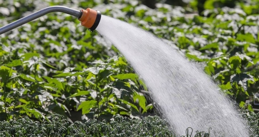 SAWR-Water Rates-Crops-Agriculture