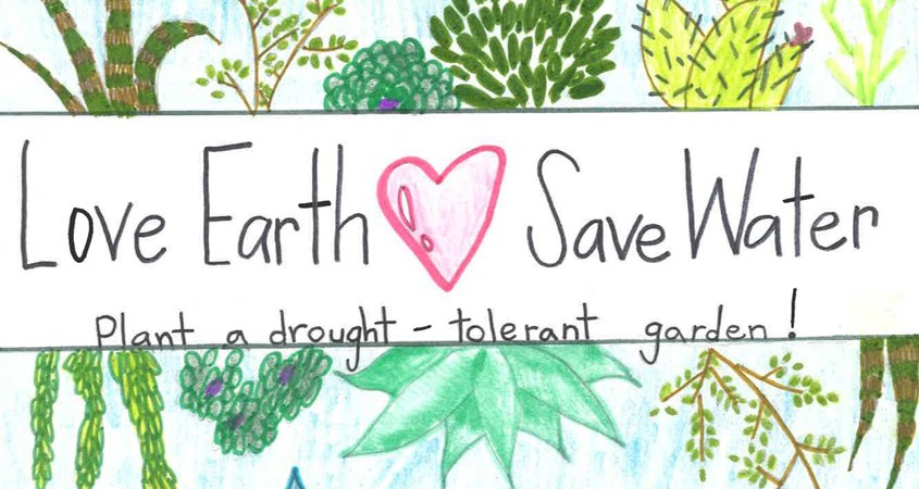 Student poster contest winner Emaline Kennedy illustrated her entry with low water use plants. Photo: Vista Irrigation District Contests