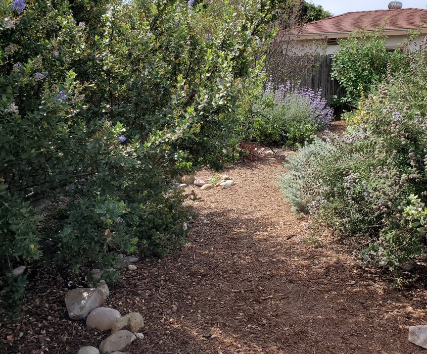 A trail lets visitors stroll through the property. Photo: Sweetwater Authority