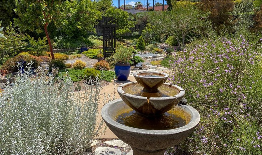 The garden includes meandering pathways, each offering different scenery and views. Photo: Helix Water District