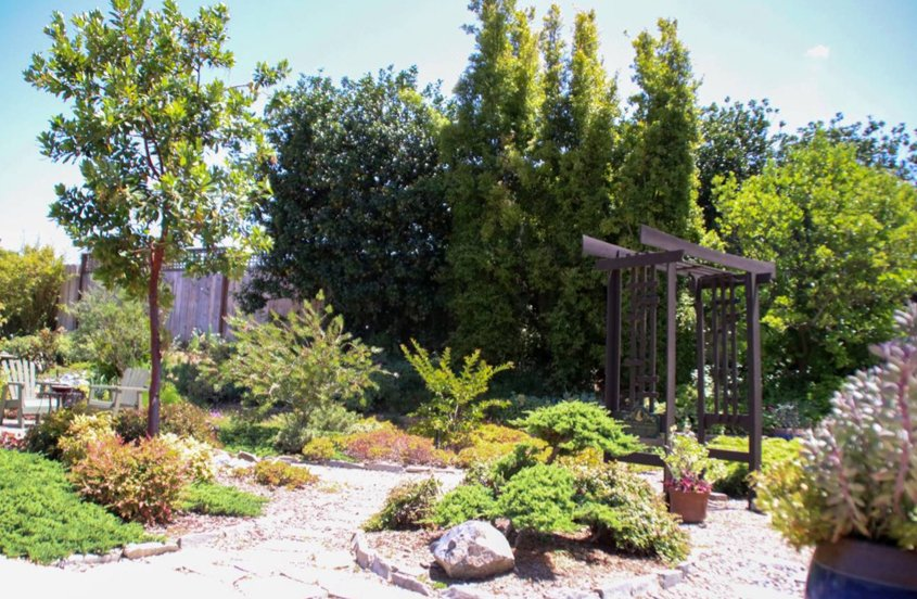 The Asian-theme garden attracts birds and butterflies. Photo: Helix Water District unused pool