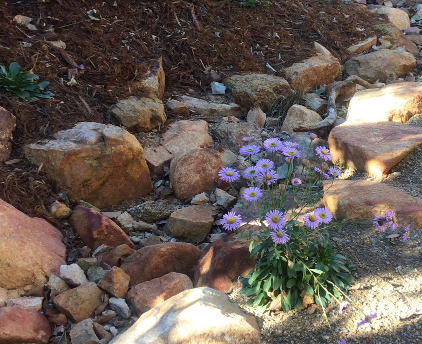 The landscaping plan includes features like this dry riverbed. Photo: City of Escondido native plants