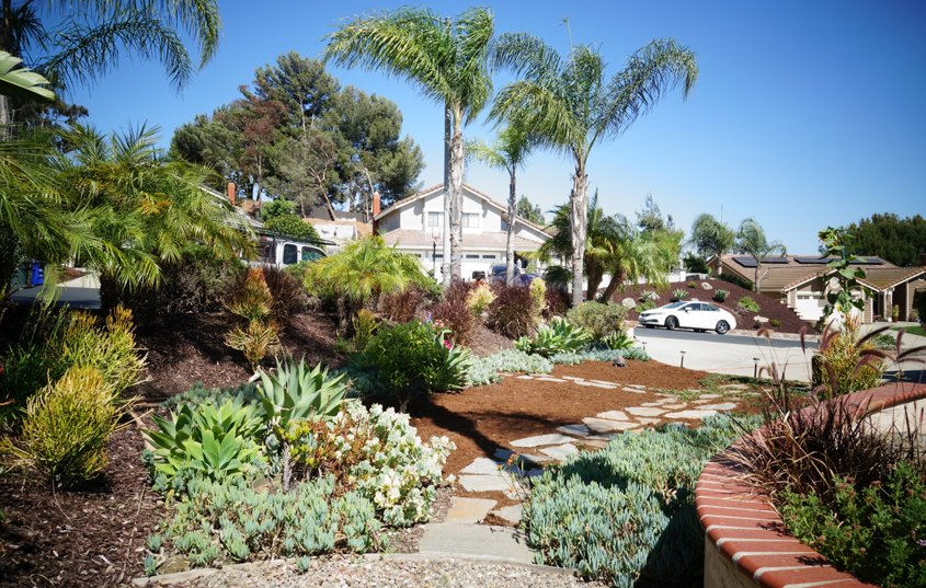The new landscaping continues to evolve with new features. Photo: Otay Water District El Cajon homeowner