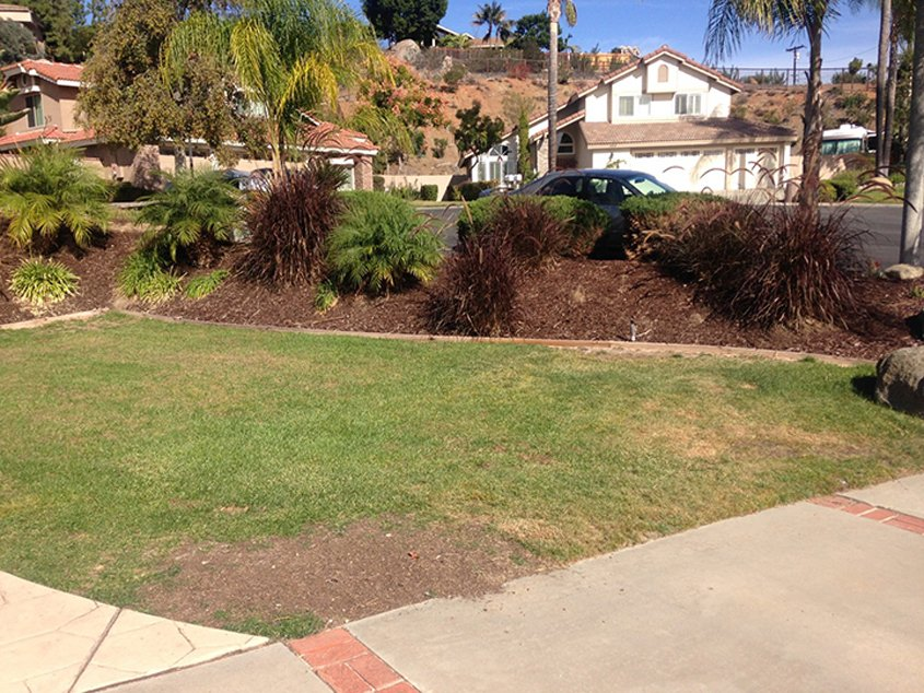 Christine Laframboise greatly reduced her water use and costs removing the old lawn. Pboto: Otay Water District El Cajon homeowner