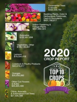 Top Crops-San Diego County-Crop Report-agriculture