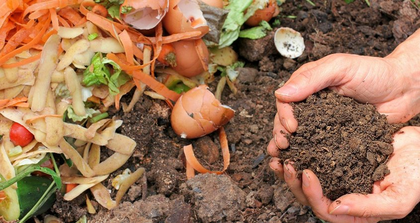 Compost-Conservation Corner-sustainability-WaterSmart-sustainable landscaping