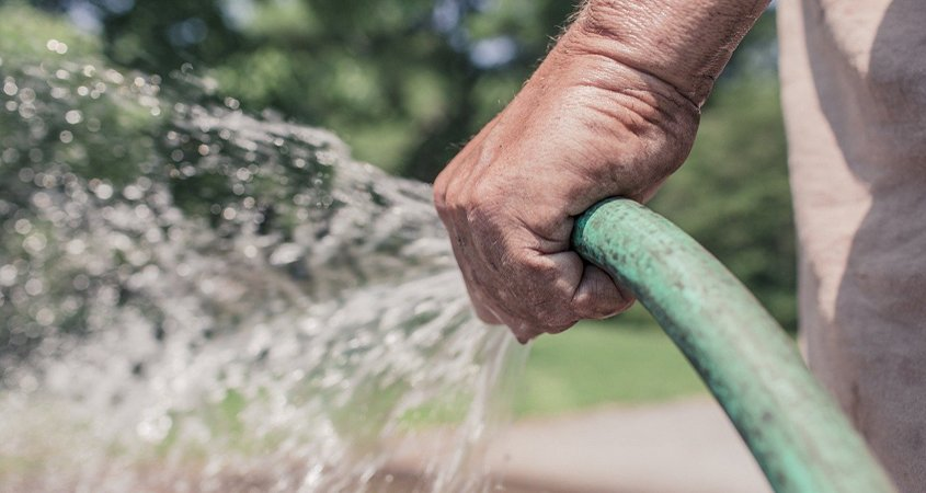 Hand watering can be an effective method to water your landscaping. Photo: Ryan McGuire / Pixabay irrigation tips